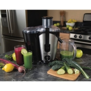 Hamilton Beach 2-Speed Plus Juice Extractor